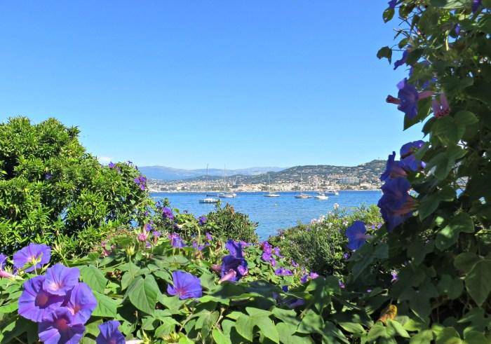 Sainte Marguerite Island