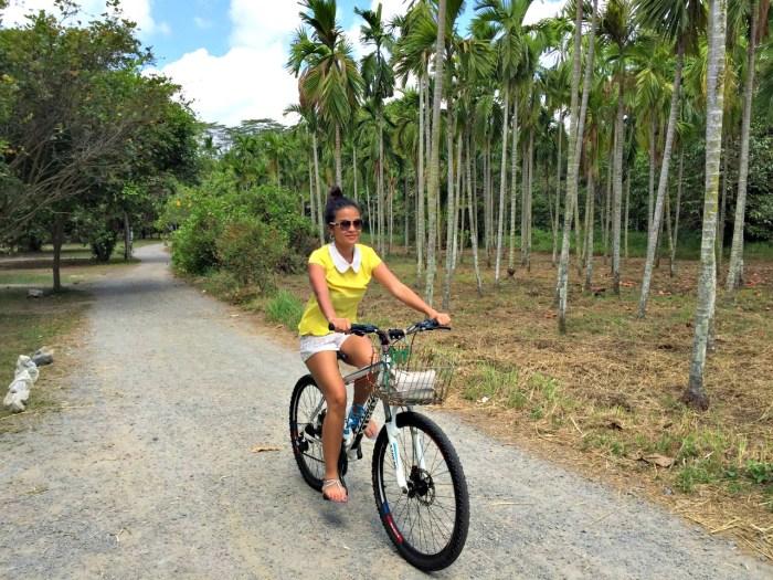 Cycling Pulau Ubin