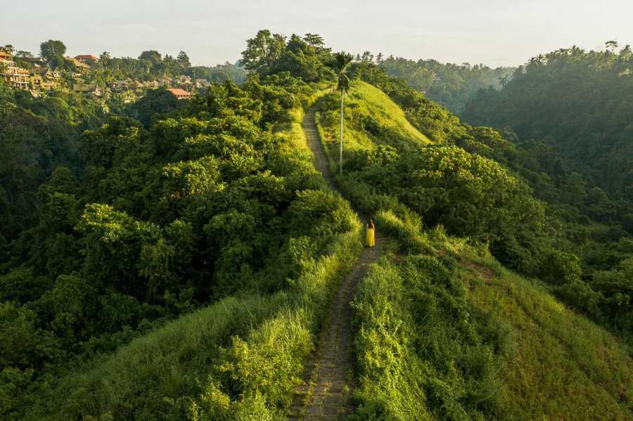 Drone shot of the Campuhan Ridge Walk in Ubud, Bali