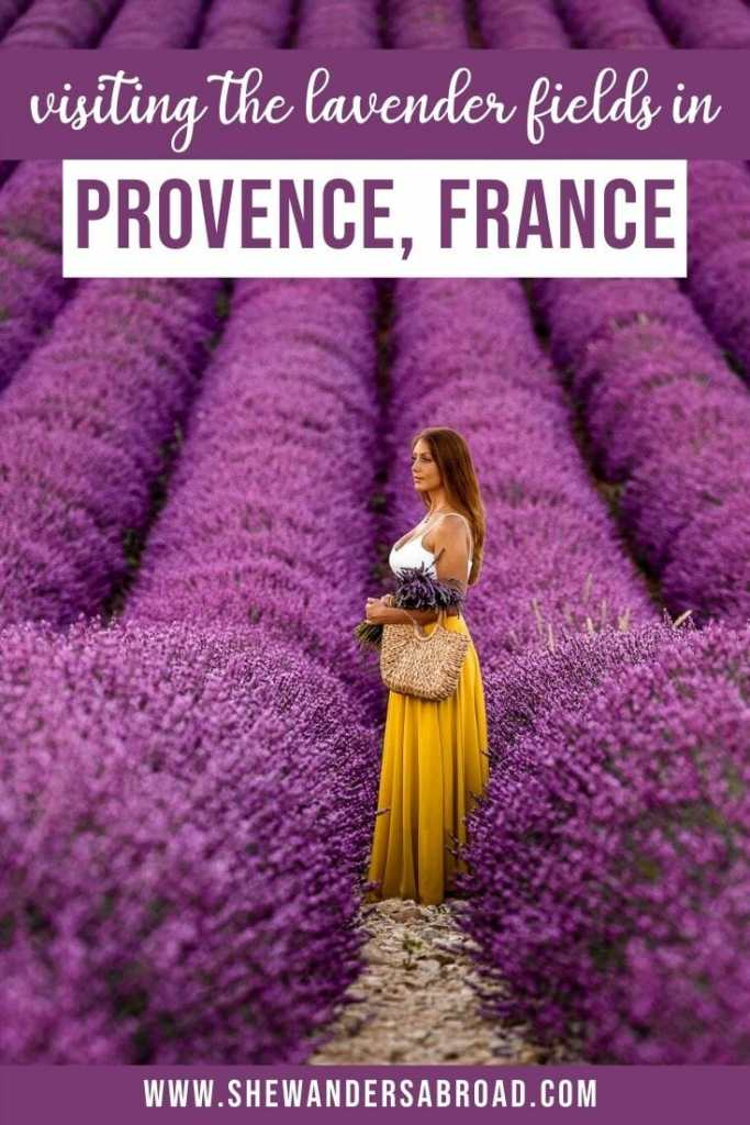 Complete Guide to Visiting the Lavender Fields in Provence France