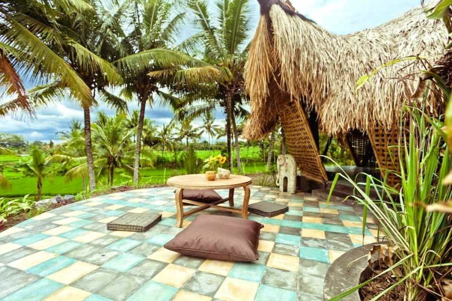 Bamboo eco cottage in rice fields Bali, Indonesia