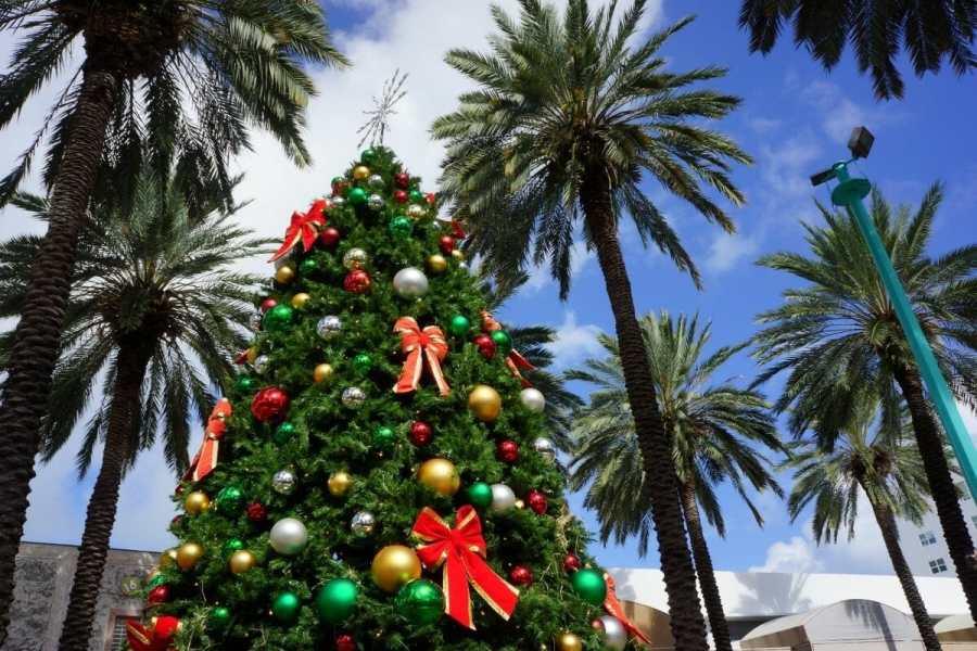 Christmas tree in Miami, Florida, USA