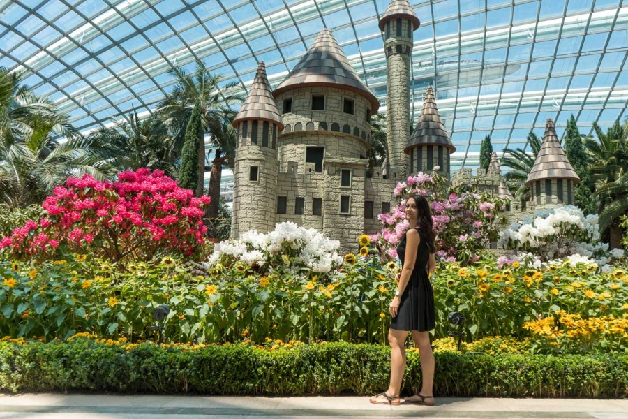 Girl in a black dress standing in front of the flower in the Flower Dome in Singapore