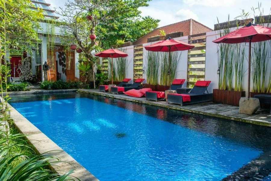 Kamar Kamar Rumah Tamu Bali