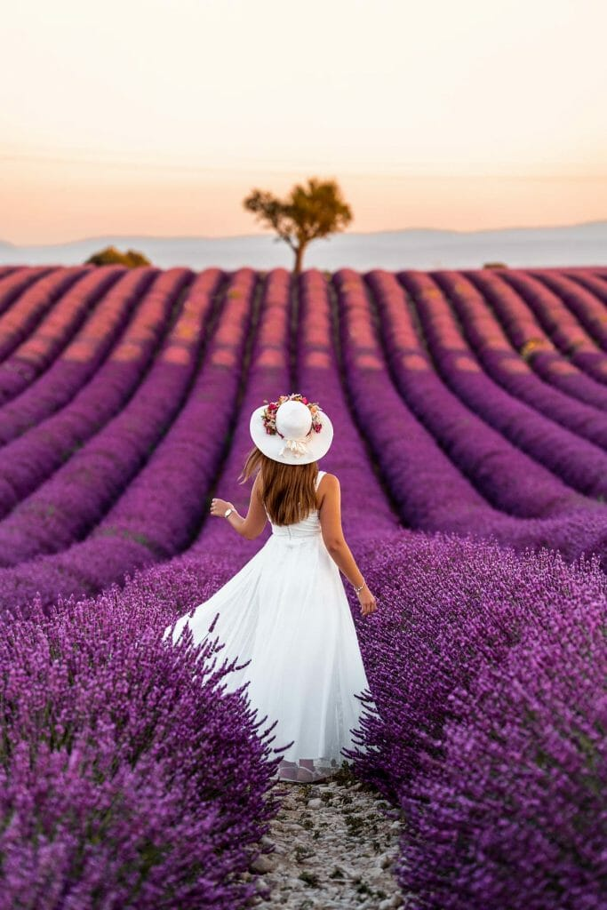 Girl in a white dress twirling in the middle of the lavender fields in Provence