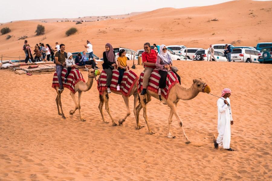 Camel riding in the Dubai Desert