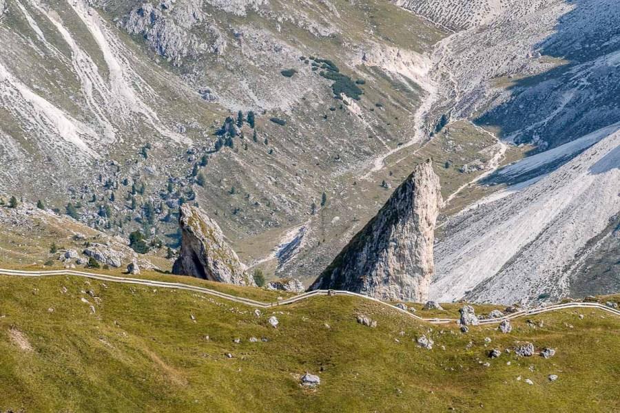Pieralongia at Seceda, Dolomites