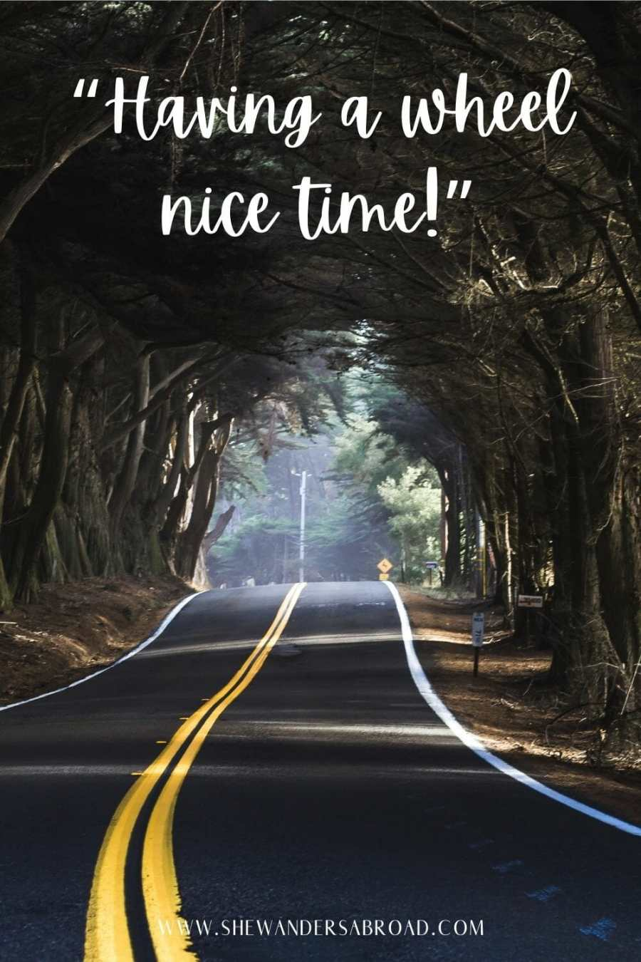 Hilarious road trip puns
