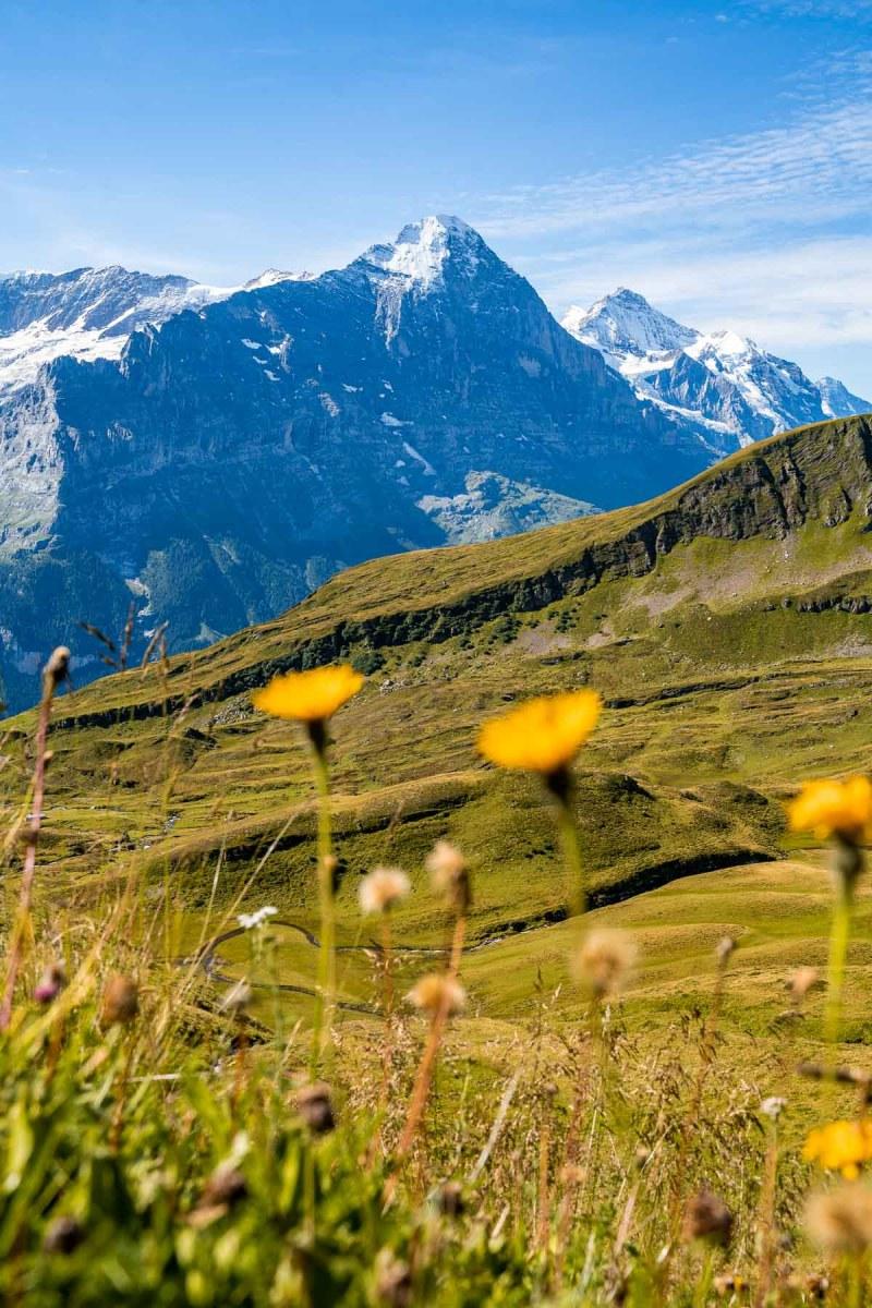 Mountain panorama at Grindelwald, Switzerland