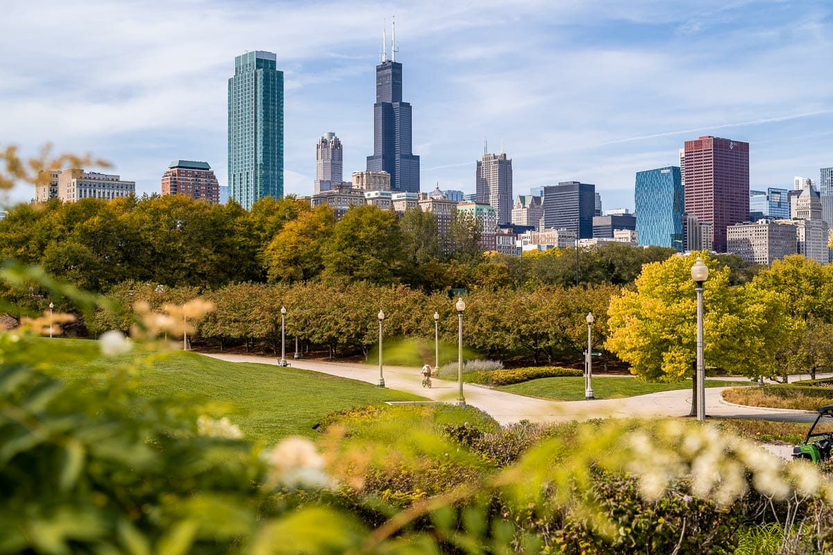 Chicago Skyline View from Museum Campus