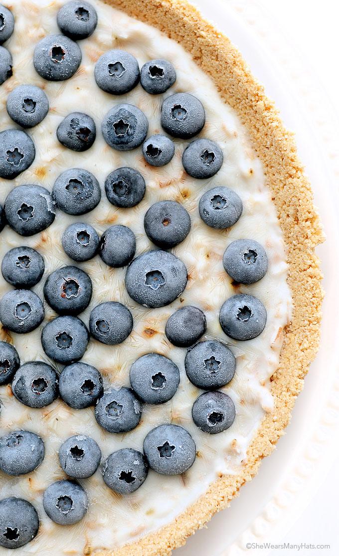 Frozen Blueberry Coconut Yogurt Pie Recipe | shewearsmanyhats.com