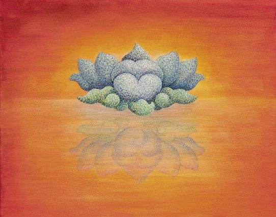 The First Blush of the Blue Lotus