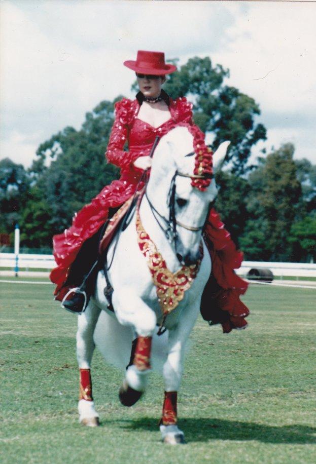 Stallion 'Falconero' and his fine filly