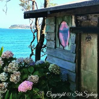 hydrangeas, huts & headlands