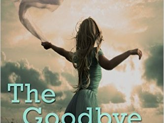 Free eBook Deal: The Goodbye Storm by Danielle Stewart