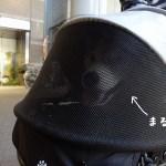 柴犬まるとJRに乗って吉祥寺にいってきました!8キロの柴犬はJRに乗れるのか!?