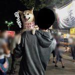 柴犬まるさんと一緒に初めてのお祭りに行ったのはいいけど…!?