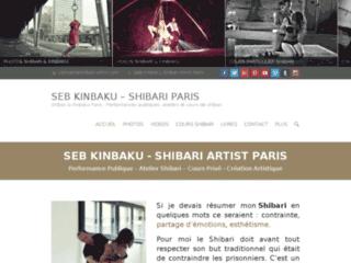shibari-artist-com