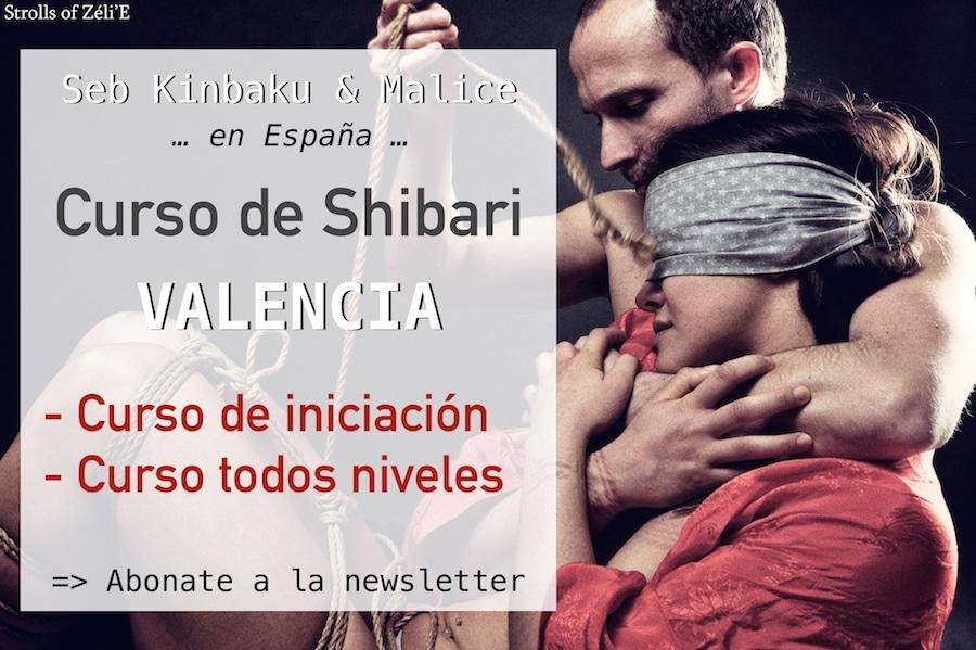 curso de shibari valencia espana