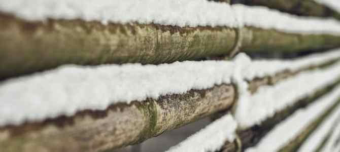 Nouveau shooting Shibari dans la neige