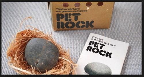 Pet Rocks Shibumo