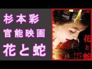 杉本彩代表映画「花と蛇」団鬼六原作・官能SM映画あらすじ