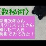 小泉進次郎さんと滝川クリステルさん  結婚した二人の相性を占ってみた 【 数秘&カード・占い・Kurona 】