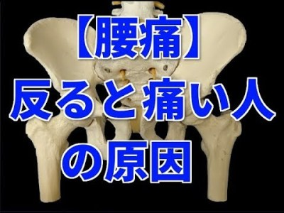【腰痛】反ると痛い人の原因   腰痛改善 セルフケア ストレッチ