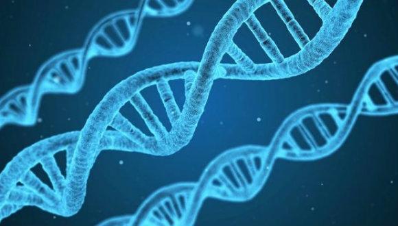 DNA sentezleme