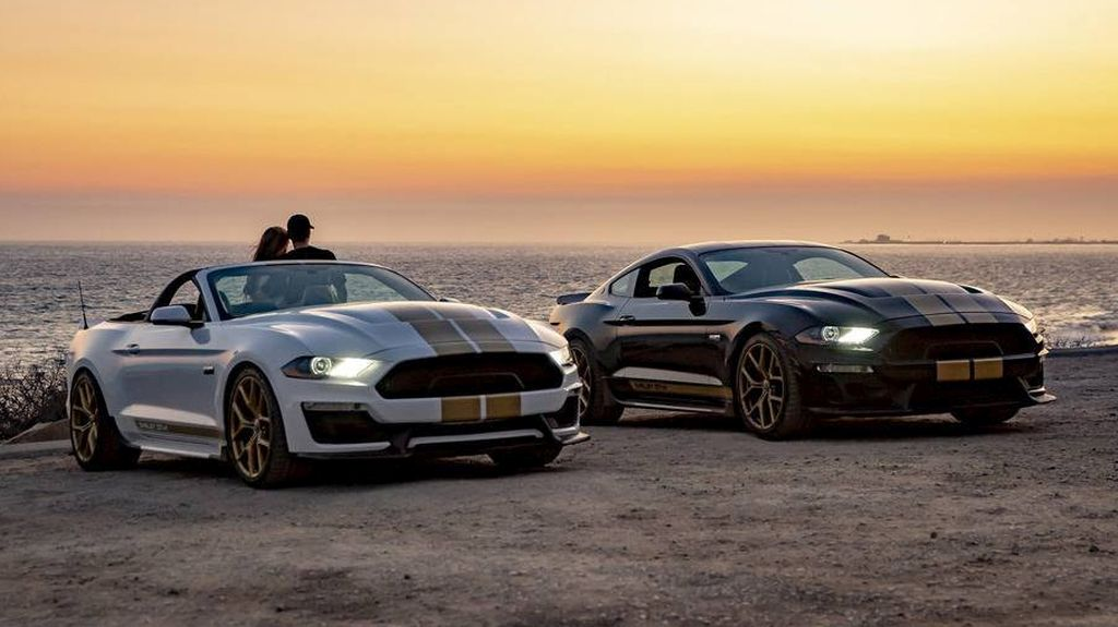 2019 Shelby GT Ford Mustang