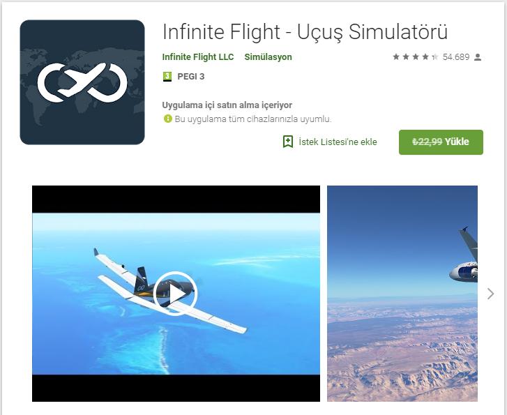 Infinite Flight kısa süreliğine ücretsiz oldu!