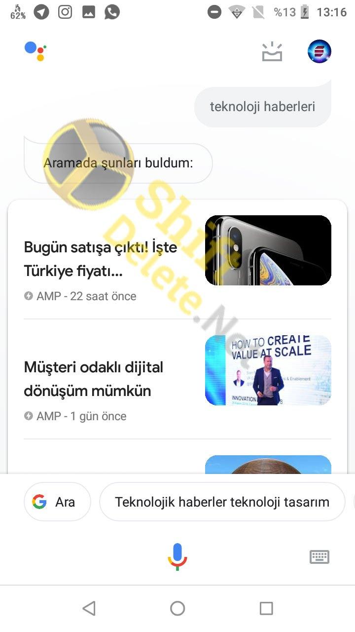 Türkçe Google Asistan
