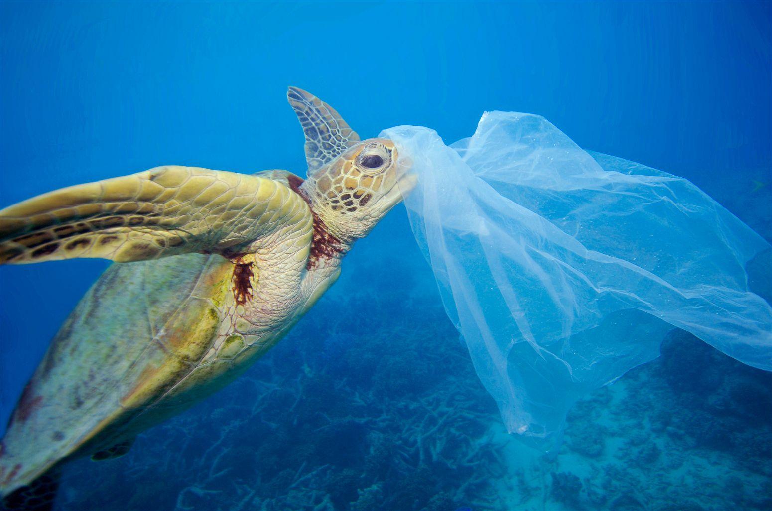 Plastik atıkların geri dönüşümü