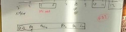 xiaomi pocophone f2 çıkış tarihi
