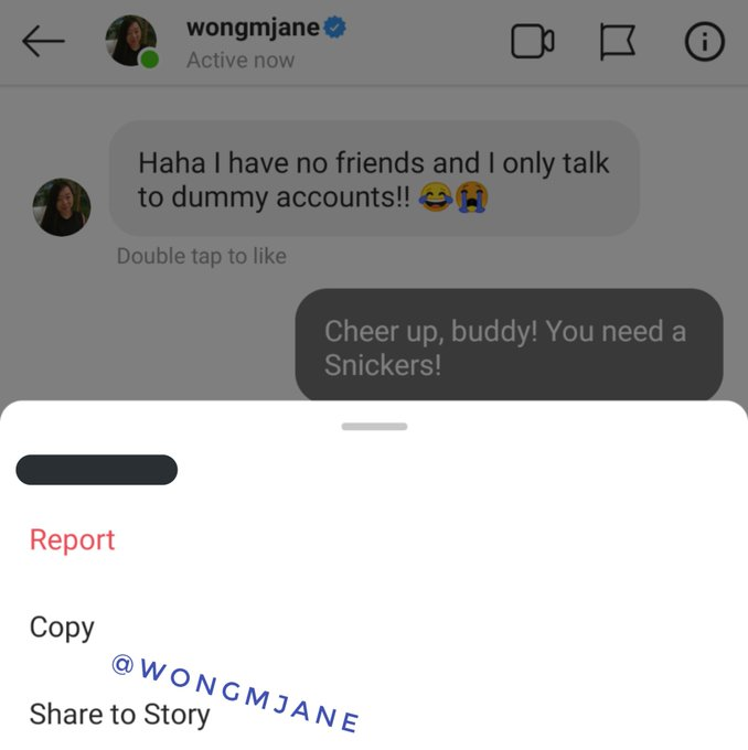 Instagram özel mesaj içeriği ekran görüntüsü almadan paylaşılabilecek