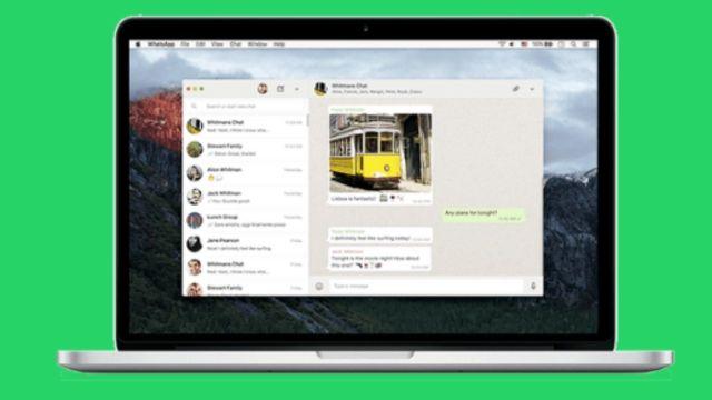 WhatsApp masaüstü sürümü kararıyor! İşte yenilikler