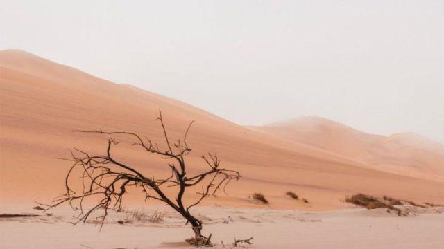 su kıtlığı için çözüm olacak teknolojiler