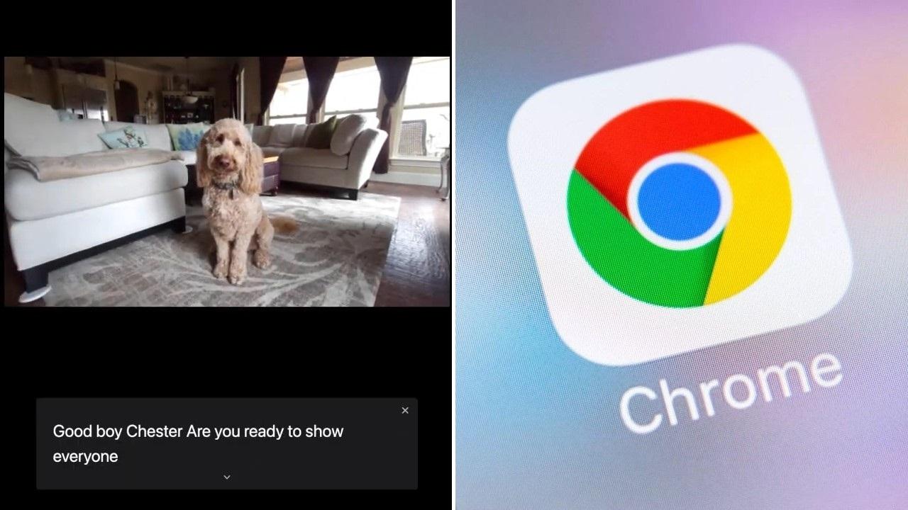 Google Chrome canlı altyazılar