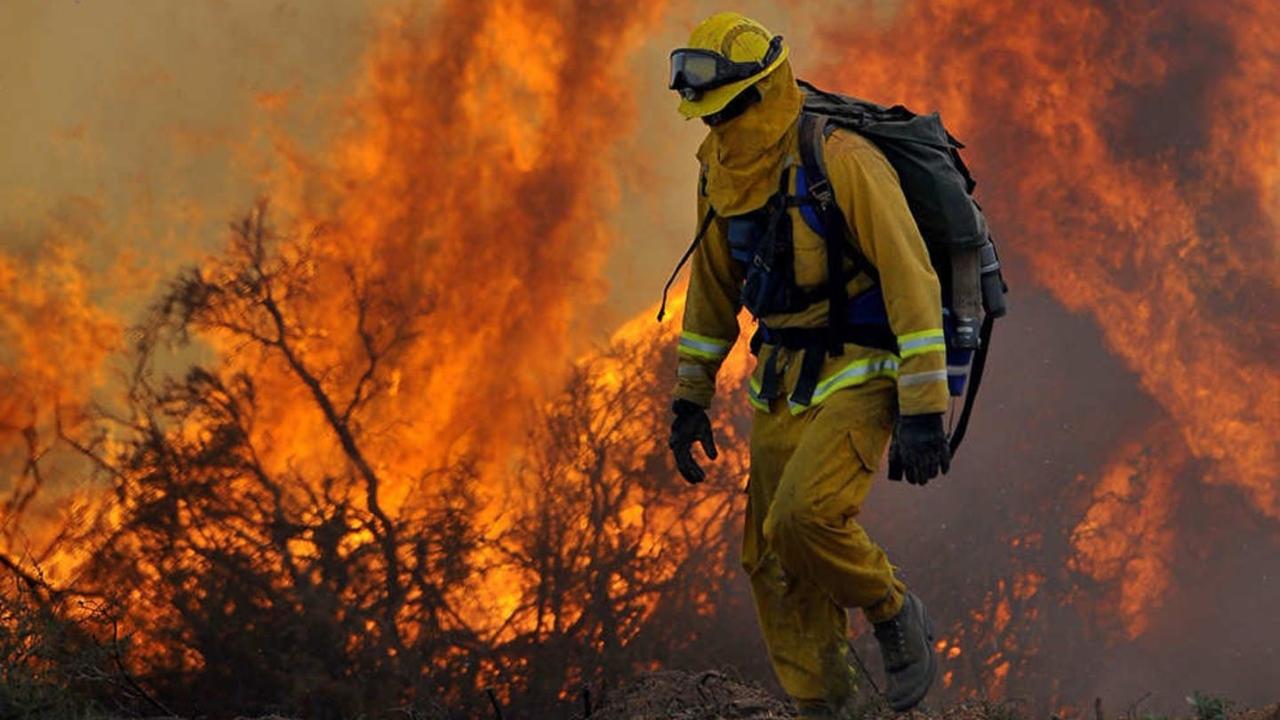 Zombi yangınları hızla artıyor.