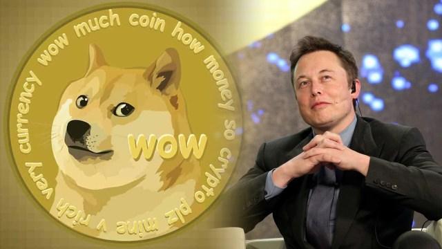 Elon Musk'tan Dogecoin'e yardım çağrısı