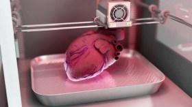 Uzayda olası tedavi için karaciğer dokusu geliştirildi