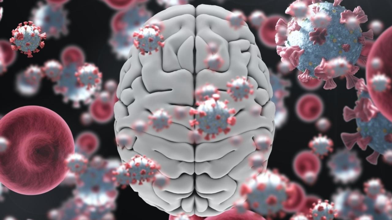 COVID-19 beyinde gri madde hasarına yol açıyor