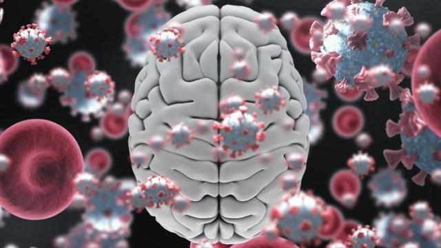 Yeni çalışma: COVID-19 beyinde ciddi hasara yol açıyor