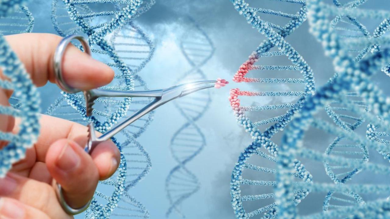 genetik teknoloji kullanımı