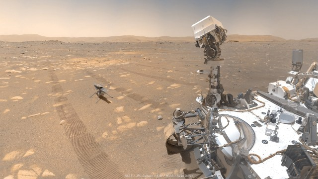 NASA Perseverance gezgininin özçekimi