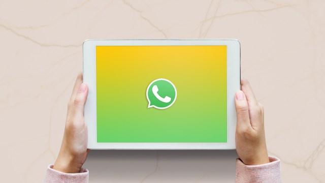 iPad için WhatsApp uygulaması