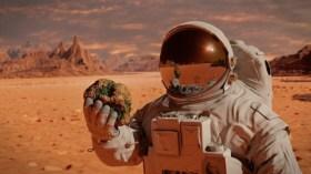 NASA, 'yapay Mars' yolcusu arıyor! Kriterler neler?