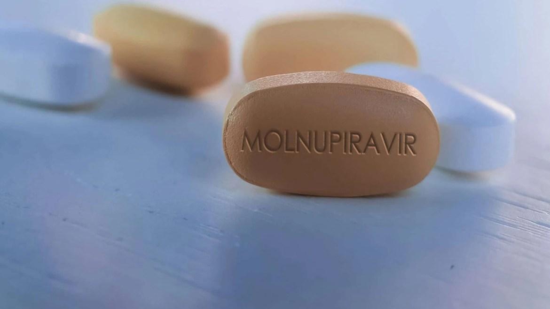 covid-19 molnupiravir