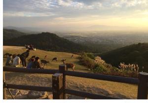 若草山の夕日2