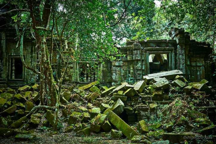 Angkor(アンコール)遺跡群にあるBengMealea(ベン・メリア)の崩壊した壁